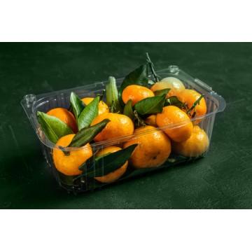 Контейнеры для ягод и фруктов